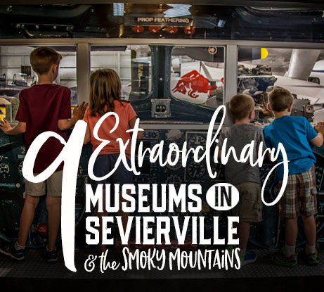 Extraordinary Museums In Sevireville