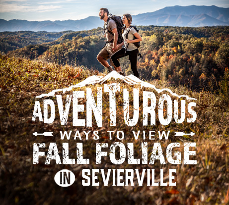 Adventurous Ways To View Fall Foliage In Sevierville