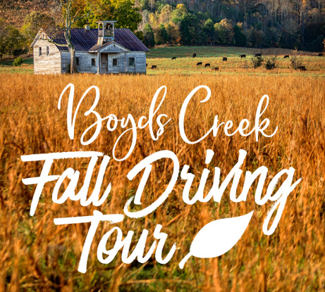 Boyds Creek Fall Driving Tour Icon