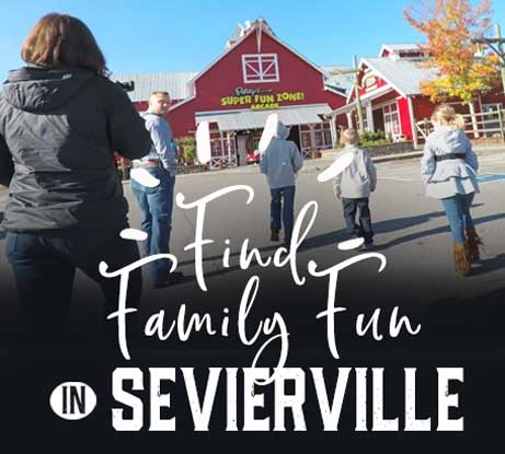 Find Family Fun