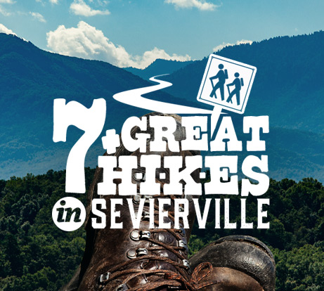 Great Hikes In Sevierville Icon
