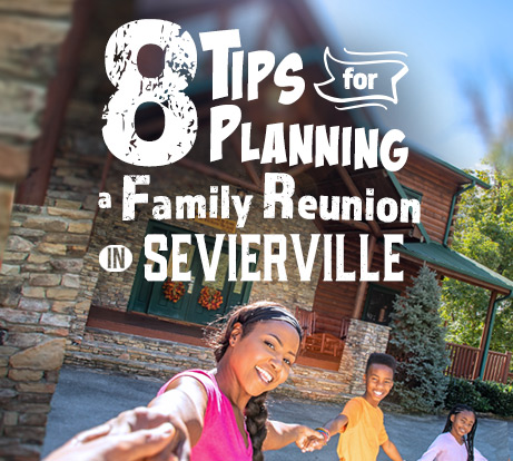 Tips for Planning a Family Reunion Icon